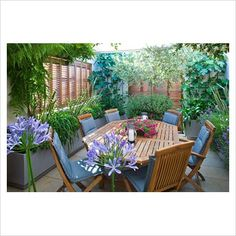 Outdoor area love the planting and shutters Rooftop Terrace, Terrace Garden, Small Gardens, Outdoor Gardens, Roof Gardens, Outdoor Spaces, Outdoor Living, Outdoor Decor, Wooden Table And Chairs