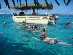 Snorkelling Rarotonga