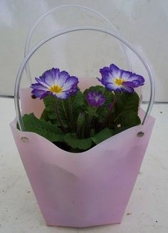 18CM FLOWER BAG WITH PRIMULA (PLA16)