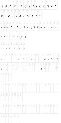 Paduka Script// a pretty handwritten calligraphy