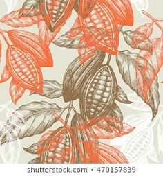 Explore high-quality, royalty-free stock images and photos by adehoidar available for purchase at Shutterstock. Tree Illustration, Botanical Illustration, Theobroma Cacao, Food Packaging Design, Green Art, Realistic Drawings, Grafik Design, Royalty Free Images, Spoonflower