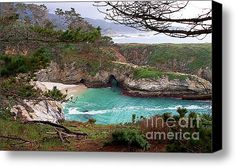 China Cove At Point Lobos Stretched Canvas Print / Canvas Art By Charlene Mitchell