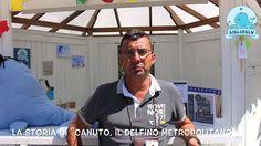 """BiblioBlu incontra Andrea Rotta - """"Canuto, il delfino metropolitano"""""""