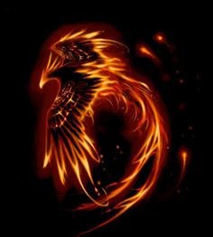 Phoenix | Tattoo-Bewertung für Tattoos, Vorlagen und Motive