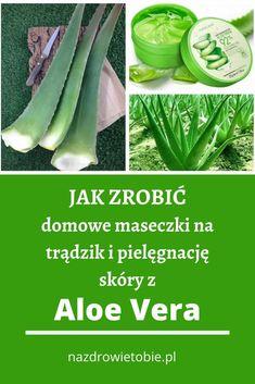 Aloe Vera, Natural Cosmetics, Beauty Hacks, Beauty Tips, Celery, Skin Care, Health, Face, Fitness