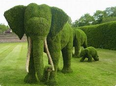 "Amazing garden full of topiary sculptures. Amazing garden full of topiary sculptures. - Art, Creative - Check out: Amazing ""Fairy Tale"" Garden on Barnorama Amazing Gardens, Beautiful Gardens, Beautiful Park, Nature Green, Nature Nature, Amazing Grass, Topiary Garden, Topiaries, Moss Art"