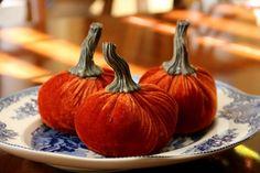 Three Little Pumpkins Sitting on a Plate