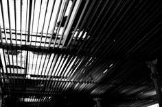 #Diseño #Fotografía #Vida #CaminoyVeo #Techo