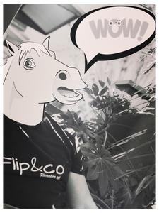 Flip&co...wow