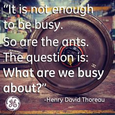 It is not enough to be busy. So are the ants. The question is: What are we busy about? ~ Thoreau