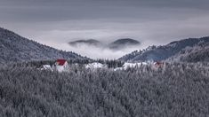 Transylvania World is the non-profit association, which is developing and managing worldwide the Transylvania, Dracula and other related brands. Dracula, Clouds, Mountains, World, Nature, Travel, Naturaleza, Viajes, Bram Stoker's Dracula