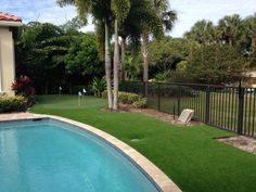 416 Best Artificial Grass Landscaping Images In 2020