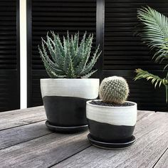 MOUNTAIN RANGE PLANTERS | Created in Sydney by Rita Mu - ANTLER and MOSS