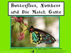 Price $4.00 Counting all butterflies! In  Butterflies, Number and Die, learners match 1 to 20 colorful, high quality butterfly drawings to numbers and then to dice. These beautiful task cards challenge students and can be used at a center or as a class game.This lesson includes 18 printable pages, optional directions to the teacher, links to web games, videos and songs about numbers 1-20 center and game options.