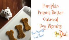 Your Simple Solutions Diva, Laura Morey, shows you how easy it is to make these simple dog biscuits for your pup! (They LOVE pumpkin, too!) For more recipes,. Pumpkin Dog Biscuits, Pumpkin Dog Treats, Doggie Treats, Pet Insurance For Dogs, Peanut Butter Oatmeal, Dog Teeth, Healthy Pets, Dog Eating
