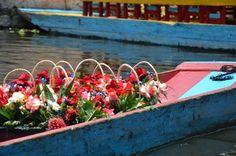 en 1987, Xochimilco,declarado Patrimonio cultural de la humanidad UNESCO