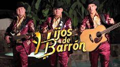 Hijos de Barron - Sinaloense Hecho y Derecho : Corridos en estudio 2013 - Sinaloa-Mp3