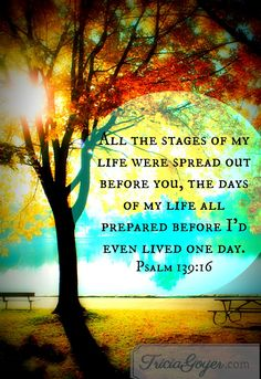 """Like an open book, you watched me grow from conception to birth; all the stages of my life were spread out before you,The days of my life all prepared before I'd even lived one day.""  -Psalms 139:15-16  The Message"