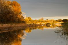 United Colors of Autumn by *thrumyeye on deviantART
