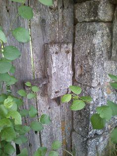 Cerradura de madera en Rabé de los Escuderos, Burgos, Castilla