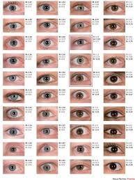 eye color chart - Google Search Eye Color Chart, Colour, Eyes, Google Search, Eye Color Charts, Color, Colors