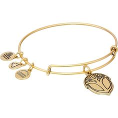 Alex and Ani Unexpected Miracles Expandable Wire Bangle Bracelet (1,010 PHP) ❤ liked on Polyvore featuring jewelry, bracelets, gold, bangle charm bracelet, expandable wire bangle, hinged bracelet, adjustable wire bangle and hinged bangle