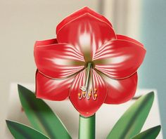 Valentine Amaryllis 3D Popup card by CardNotions