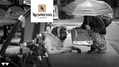 #adv #nespresso #dogs #rain