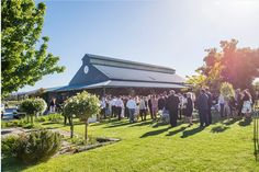 Garden Ceremony at Blue Wren Winery in Mudgee NSW.