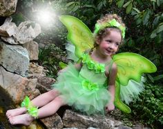 Deluxe Tinkerbell Fairy Costume on Etsy, $190.00