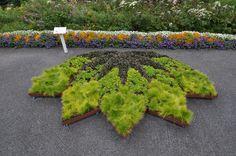 Google Image Result for http://www.alicesgardentravelbuzz.com/wp-content/uploads/2011/09/FractalGrdn0795_hr.jpg