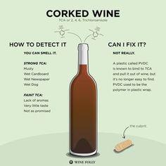 120+ Most Common Wine Descriptions (Infographic) | Wine Folly | Bloglovin'