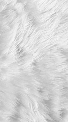 White Fluffy Fur Iphone Wallpaper
