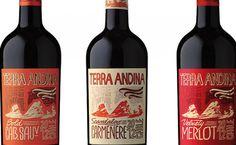 PREMIO AL DISEÑO - Noticias - PlanetaVino.com / Vinos Chilenos, Chilean Vineyards, Chilean Wine, Viñas Chilenas, Noticias Vitivinícolas, Gastronomía , Eventos y mucho más