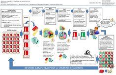 kamishibai lean process