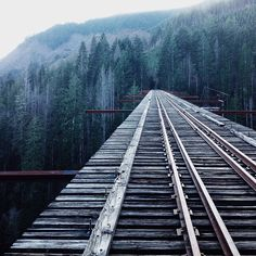 The Vance Creek Bridge one of the highest railway arch bridges ever built in the United States standing at 347 feet high. #treasurenw