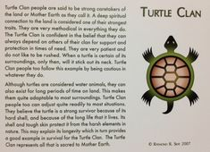 Image result for turtle clan