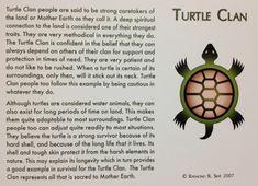 turtle clan - Google Search