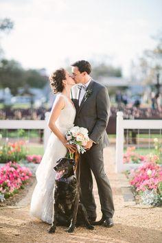 Dogs in Weddings | Taylor Lord #wedding
