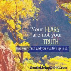 your-fears-are-not-your-truth
