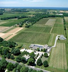 Long Island Wine Country   Wineries, Events, Shopping, Accommodations, Dining, Attractions