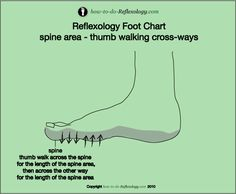 Foot reflexology step by step techniques and instructions!! Teach yourself how to do reflexology on the face, feet, hands and ears