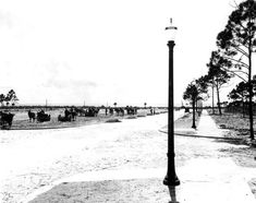 Construction workers on west end of Venice Avenue - Venice, Florida Photographed on July 13, 1926.