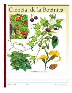 """botanica"" - Google Search"