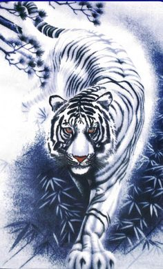 this tiger would go on back with brain versus brawn them across from a full wise looking dragon
