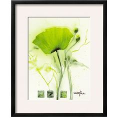 Art.Com Lime Green Coquelicot Vert I By Marthe  Framed Art Print (€135) ❤ liked on Polyvore featuring home, home decor, wall art, lime green, lime green home decor, framed wall art and lime green wall art