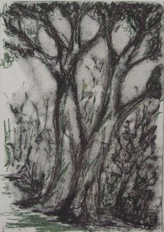 Malcolm's Favourite Tree original monoprint on by ArtElephant, £21.00