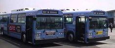 Santa Monica Big Blue Bus MCI Classic 5182