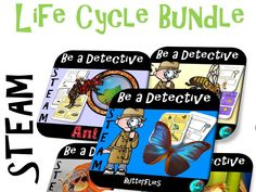 This bundle contain ideas for engaging project-based learning. These units focus on life-cycle but it also extends the understanding of the different stages. There are lesson plans that will guide you through the process of using biomimicry and steam a Steam Activities, Science Activities, Science Fun, Project Based Learning, Fun Learning, Blended Learning, Bee Life Cycle, Yellow Ladybug, Tes
