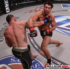 It takes more than just training in a cage. It takes top level BJJ, Muay Thai, Wrestling and Boxing to succeed. And that's what we specialize in. #MMA #martialarts http://ultimatemmact.com/mixed-martial-arts/